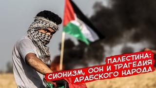 Палестина: сионизм, ООН и трагедия арабского народа
