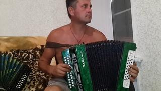 Гармонист Алтухов Дмитрий Владимирович Вечная память  (песня Поздней осенней порой)