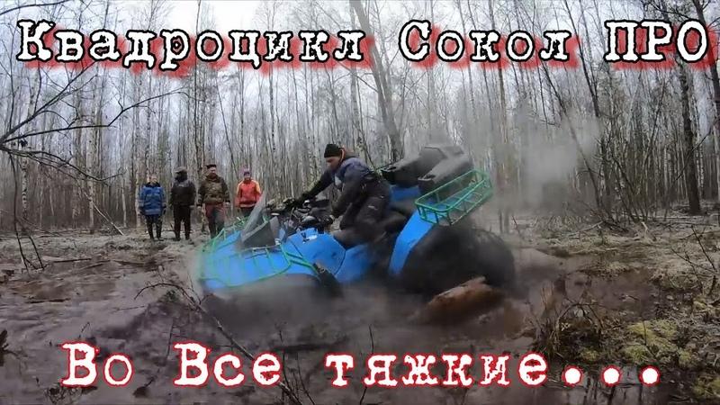 Победитель Ладога трофи квадроцикл Сокол Видео от Клуб Шаман