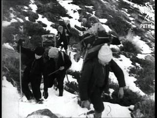 The Home Of St Bernard (1933)