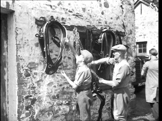 Bath And West Livestock Show (1948)