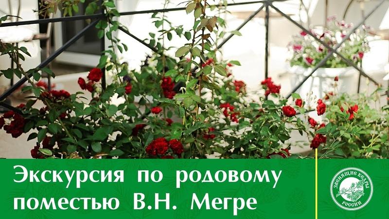Экскурсия по родовому поместью Владимира Мегре