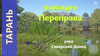 Русская рыбалка 4 - река Северский Донец - Тарань у переправы