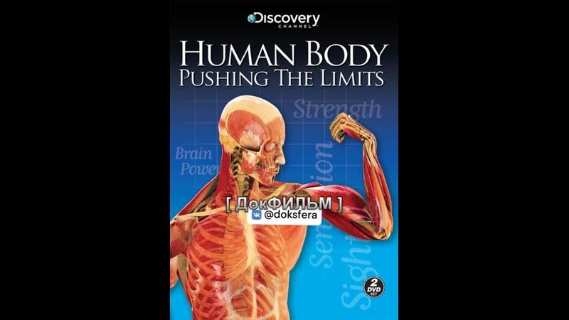 ТЕЛО ЧЕЛОВЕКА ГРАНИ ВОЗМОЖНОГО Human Body Pushing the Limits 1080p Серия 4 из 4 4 Человеческий мозг ДокСФЕРА
