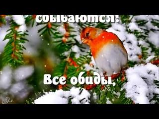 Видео от Александра Земских