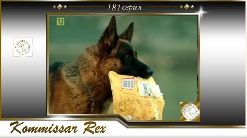 Komissar Rex 16x09 Комиссар Рекс 181 серия