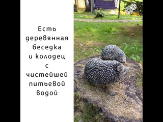 Видео от Оксаны Масленниковой