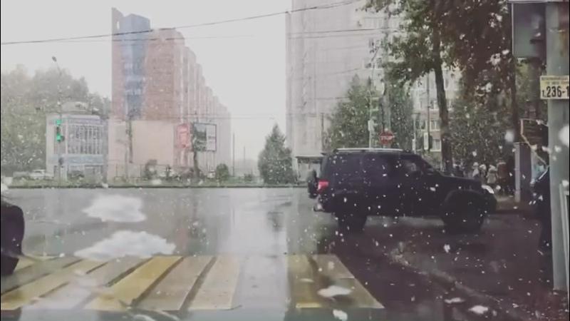 Видео от Светланы Новиковой