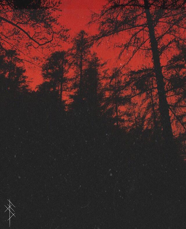 фото из альбома Анастасии Кафельниковой №7