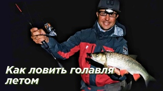 Как ловить голавля летом? Рыбалка на малых реках в сумерках