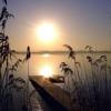 Sodruzhestvo Spokoystvie-I-Tishina
